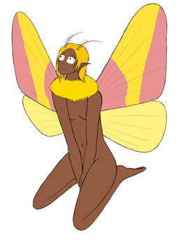 Rosy Maple Moth Girl