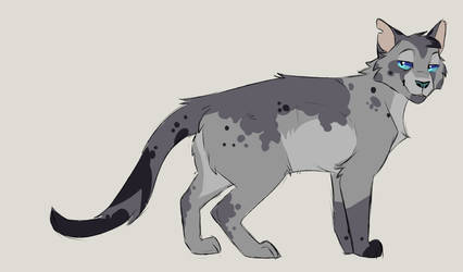 Ashfur Design by Artchert