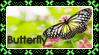 Buttefly Stamp by KawaiiMonstr