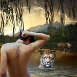 Tigers Bath Day by CrazEriC