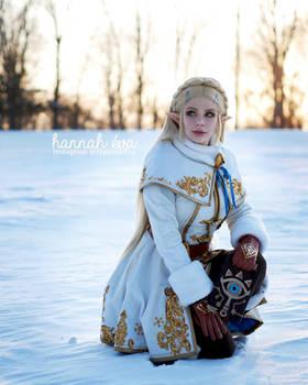 Princess Zelda - Breath of the Wild - Winter 3