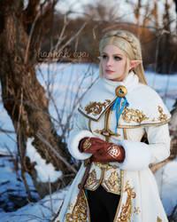Princess Zelda - Breath of the Wild - Winter 4