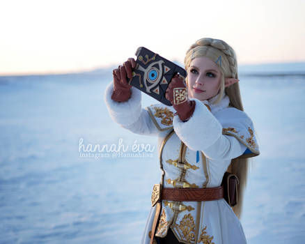 Princess Zelda - Breath of the Wild - Winter 6
