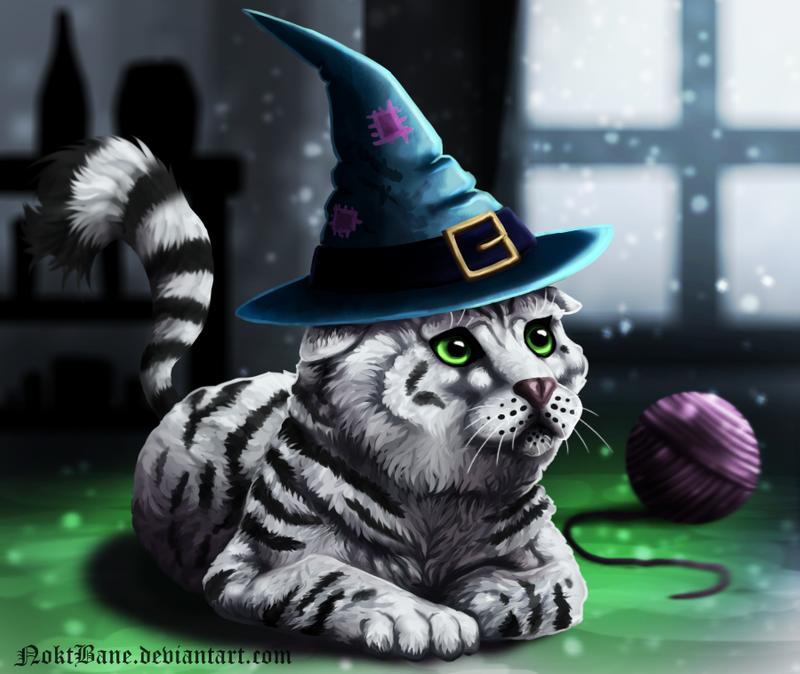 Not just a cat by NoktBane