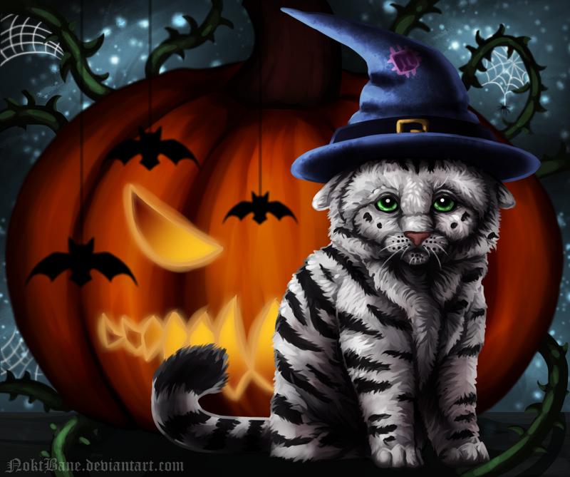 Halloween Wizard Cat by NoktBane