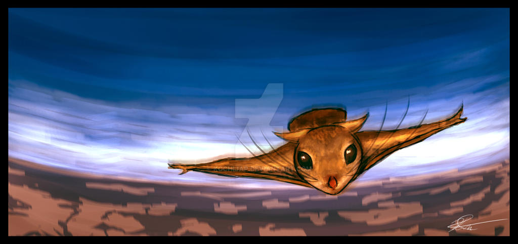 Flying Squirel By Kochijap On Deviantart