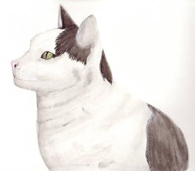 Watercolour Leo by Clairey-kun