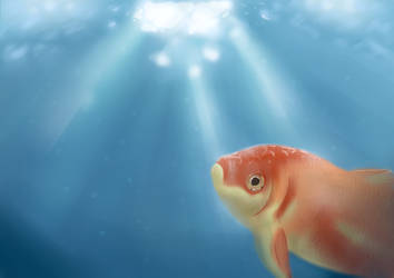 Wild Goldfish by Clairey-kun