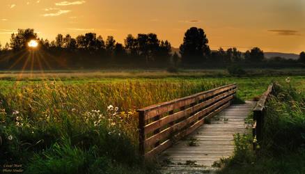 Ridgefield Sunset by CezarMart