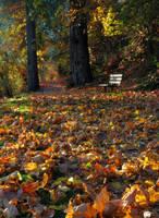 Autumn Leaves by CezarMart