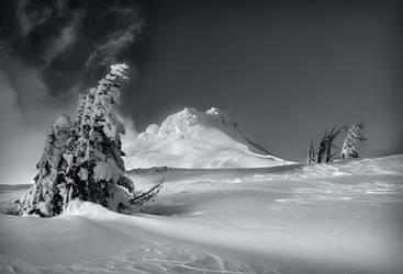Hood in Winter by CezarMart