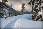 Mount Baker Winterland