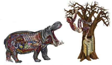RHI Anatomy 2 by PeubloShatner