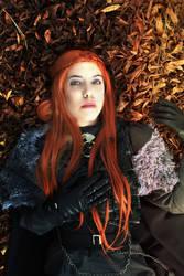 Sansa Stark cosplay by LadyOfBarians