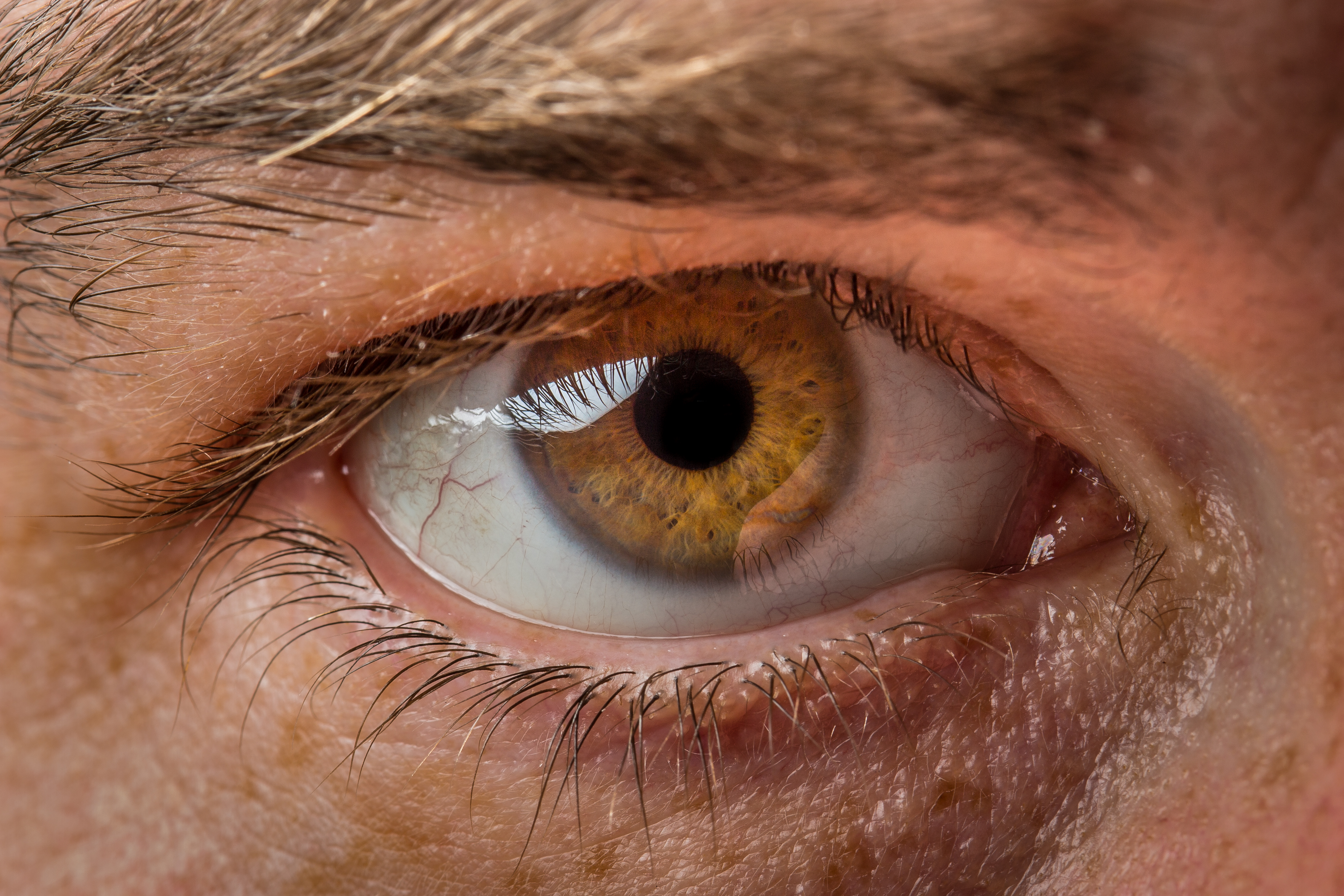 My Eye by greyghostXXX