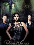 Vampire Diaries 4