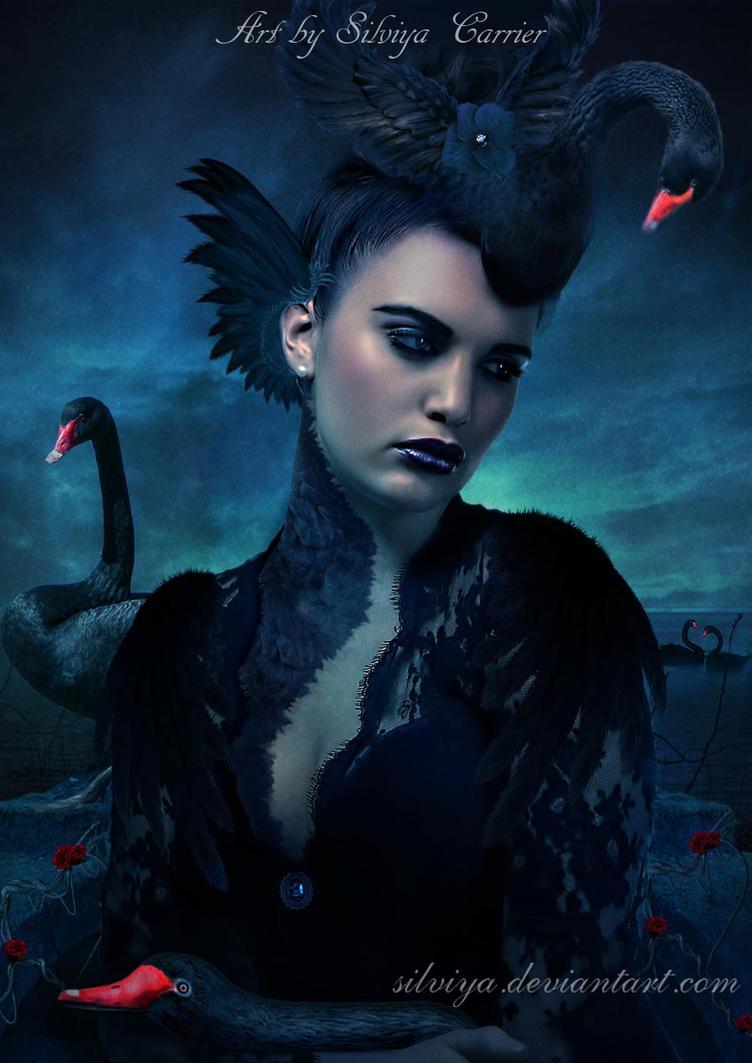 Black Swan Girl by silviya