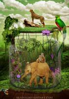 Earth Song by silviya