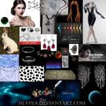 Follow The White Rabbit Stocks by silviya