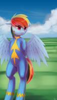 Rainbow Dash by quvr