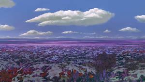 Flowerfield 360/VR