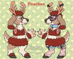 Chibi Peaches Ref by PeachesParfait