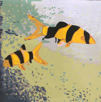 Loaches by Gwenm