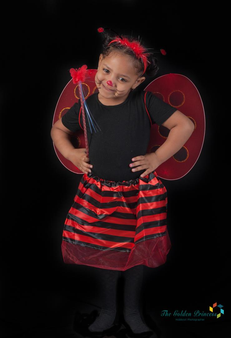 Ladybug 1 by The-Golden-Princess