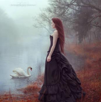 Soul of the Swan by VampireDarlla