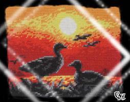 Sunset: Ducks