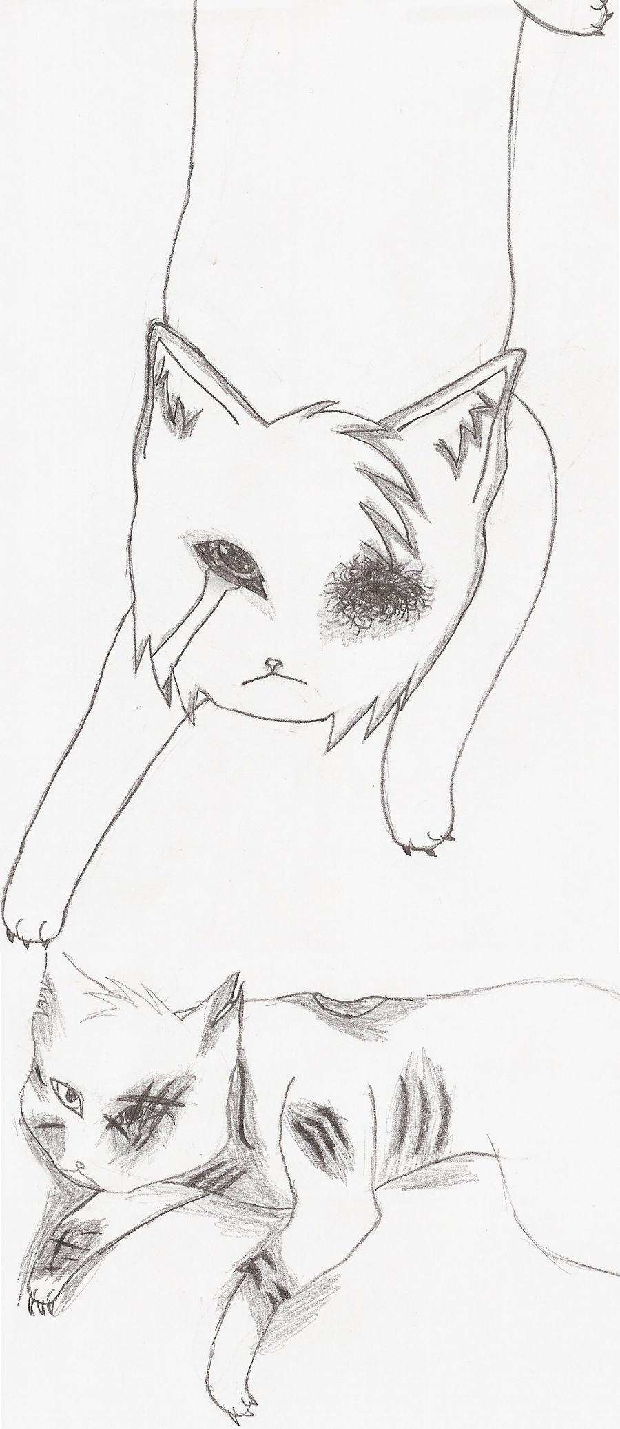 Kitties4