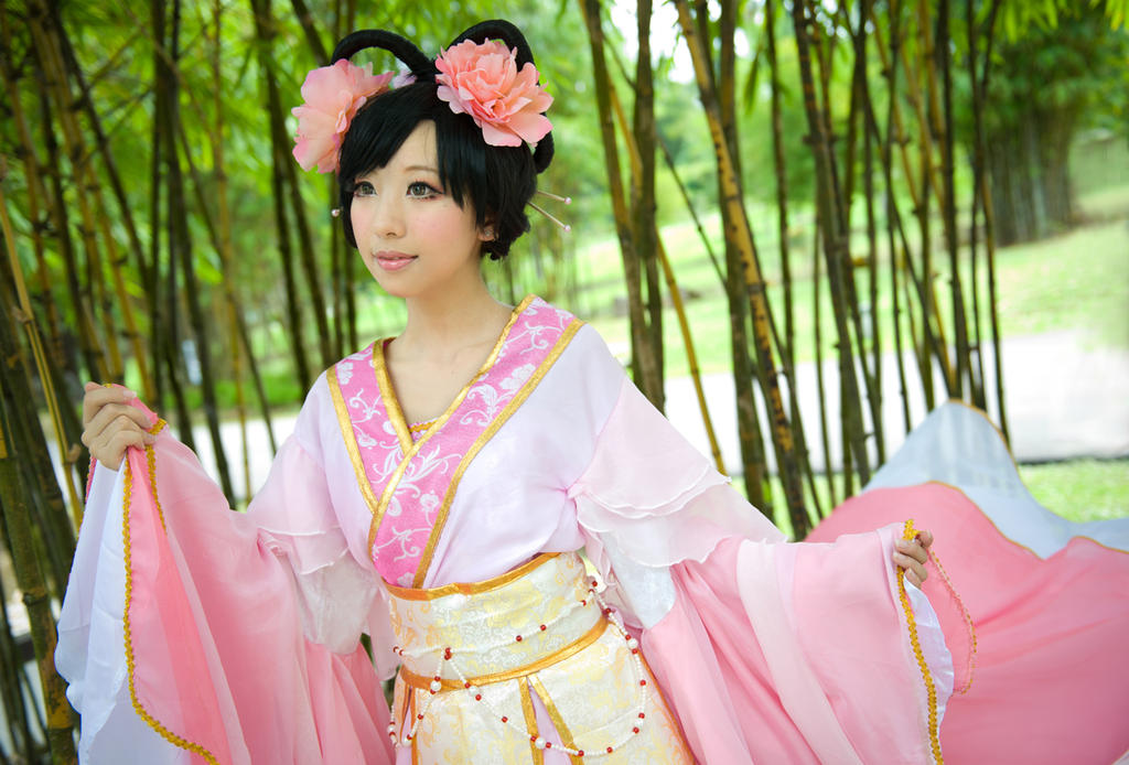 Zi bu yu:Hibiscus 01 by Mm-miyoko