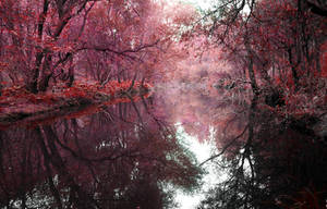 eternal fall.. by berkaymutlu