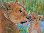 Lioness and  cub, pastels