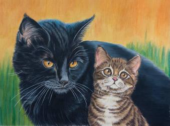 Blacky and son, warriorcats by Sarahharas07