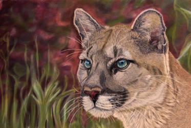 Pastel Puma by Sarahharas07