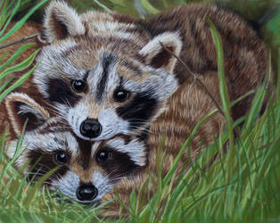 Little bandits in pastel by Sarahharas07