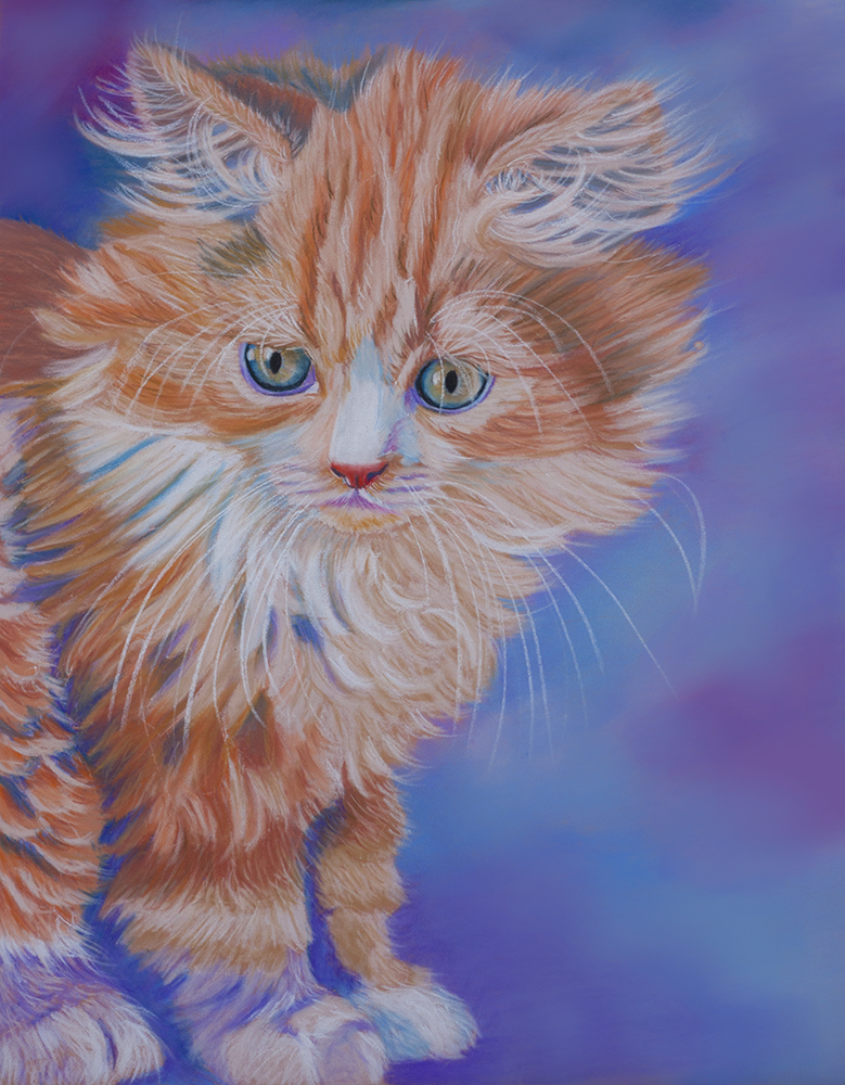 Kitten by Sarahharas07