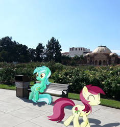 More Ponies in Real Life