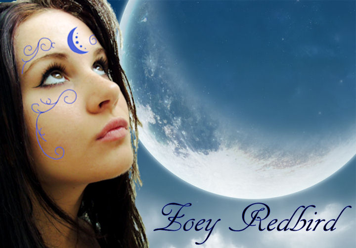 Team Zoey !  Zoey_redbird__house_of_night_by_vampirebatsahh-d2znxgu