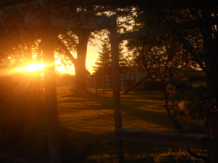Spring sunset by SakiMonkey1214