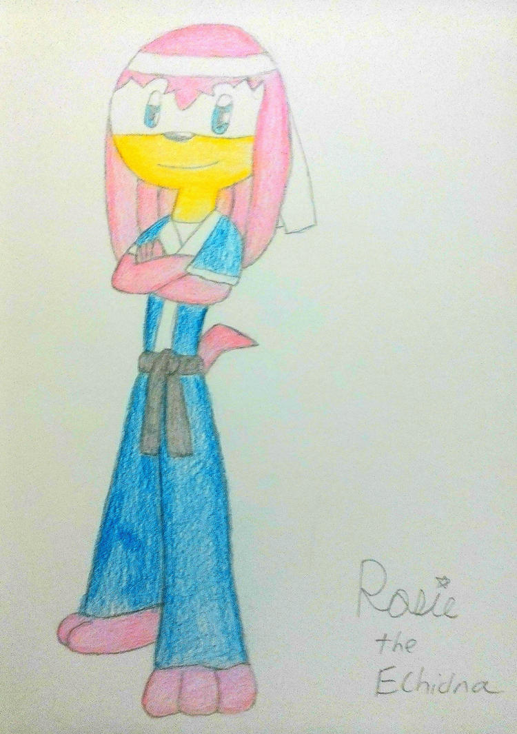 Rosie the Echidna - Always Ready For A Spar by RosietheEchidna