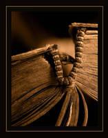 ...book... by a-n-o-m-a-l-i-a