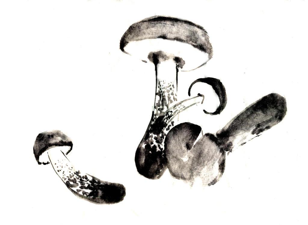 Mushrooms sumi-e by MeiMei-KaiTen