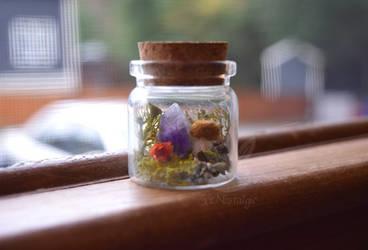 Woodland Amethyst Bottle Terrarium by xxNostalgic