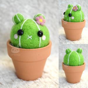 Felted Bear Cactus