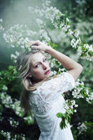 moonblossoms III by CarolineZenker