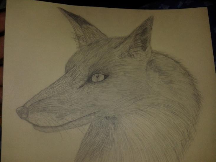 Fox by AzaleaSnape