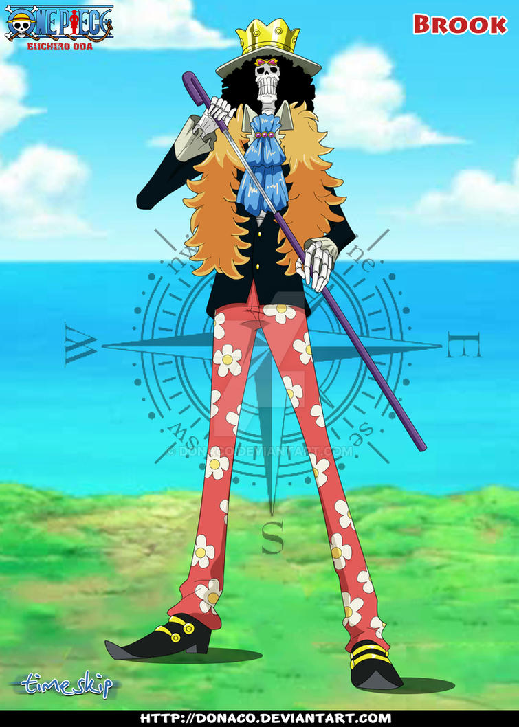 One Piece New World Brook