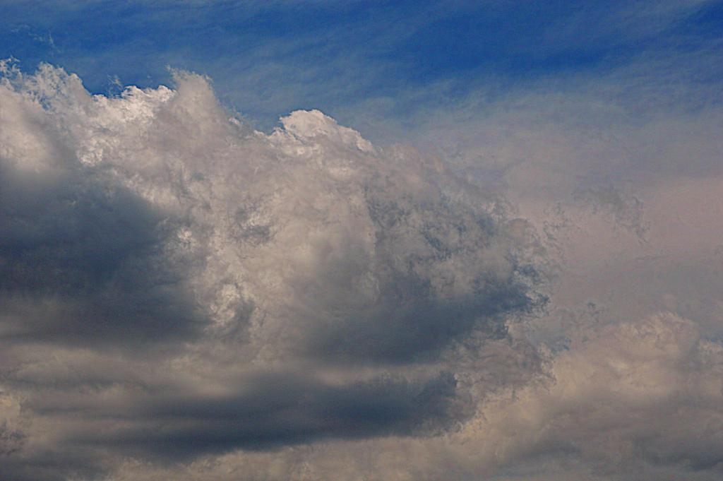 Textor Sky by tchalla811